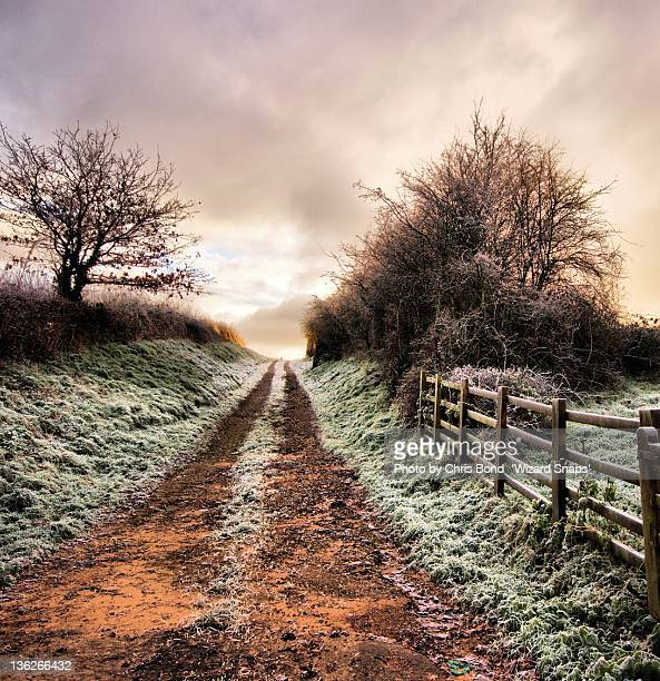 person walking on winter road - partition wizard stock pictures, royalty-free photos & images