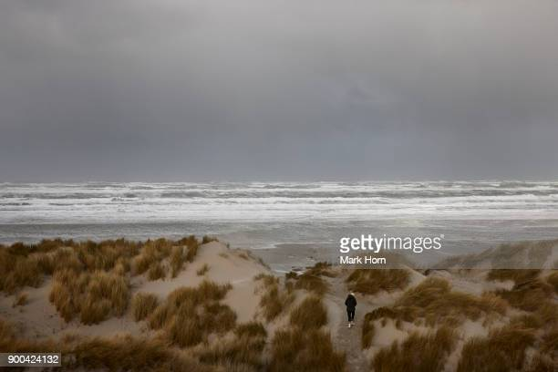 Person walking over large dunes towards sea during a storm, Terschelling, West Frisian islands, Netherlands