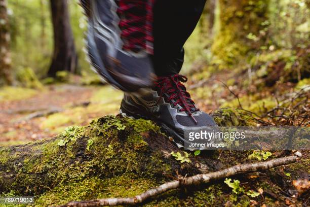 Person walking through forest, low section