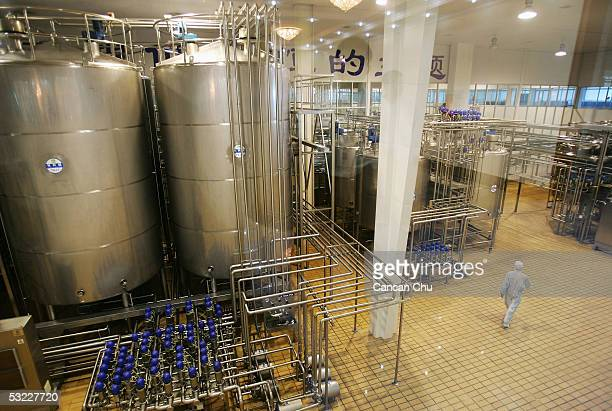 A person walks in a workshop at Mengniu Dairy Co Ltd's modern dairy farm July 12 2005 in Hohhot Inner Mongolia autonomous region in north China The...