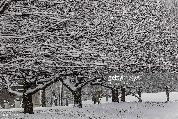 A person walks on Museum Campus during a snowstorm in Chicago Illinois Tuesday March 5 2013