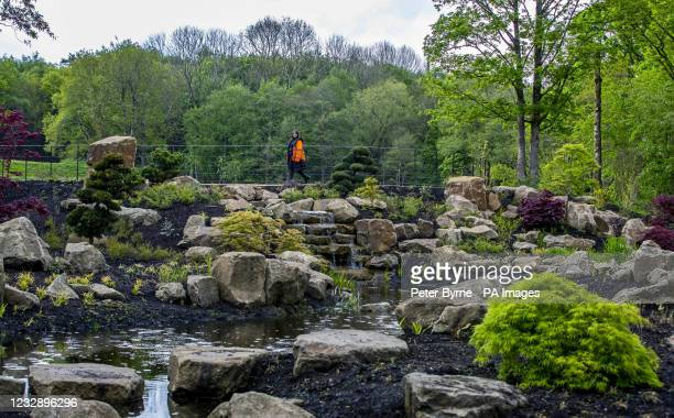 Person walks through the Chinese Garden at RHS Bridgewater Gardens, the Royal Horticultural Society's fifth public garden, which has been created...