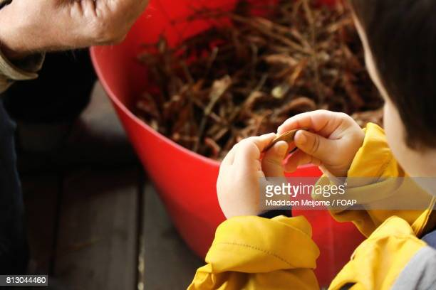 a person washing bowl - maddison stock photos and pictures