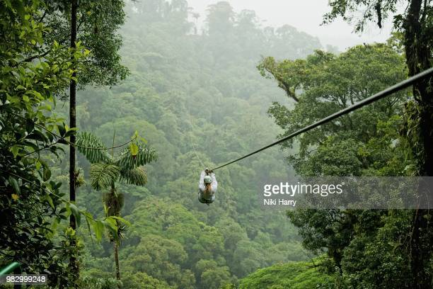 a person zip lining above a forest in costa rica. - costa rica stock pictures, royalty-free photos & images