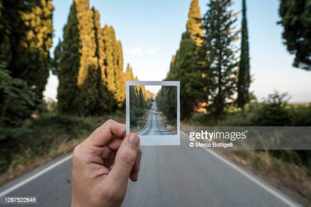 personal perspective of polaroid picture overlapping a long road among cypress trees, italy - travel foto e immagini stock