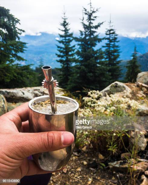 personal perspective shot of man holding yerba mate in natural setting, whistler, british columbia, canada - yerba mate fotografías e imágenes de stock