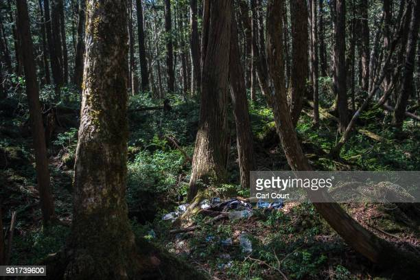Personal possessions lie beneath a tree at an apparent suicide site in Aokigahara forest on March 14 2018 in Fujikawaguchiko Japan Aokigahara forest...