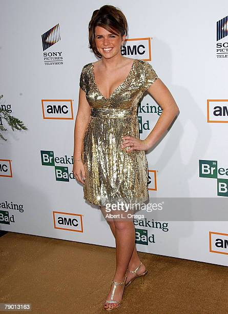 Personality Ainsley Lollar arrives at the Premiere Screening of AMC's new Sony Pictures' Television drama Breaking Bad held on January 15 2008 at The...