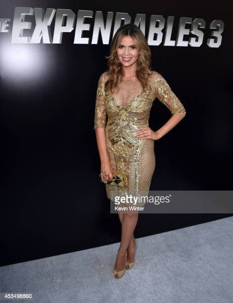 TV personality Carly Steel attends the premiere of Lionsgate Films' The Expendables 3 at TCL Chinese Theatre on August 11 2014 in Hollywood California