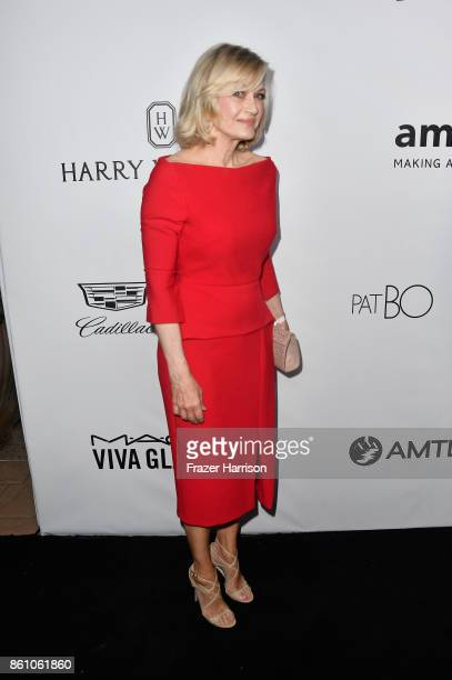 TV personality Diane Sawyer attends the amfAR Gala at Ron Burkle's Green Acres Estate on October 13 2017 in Beverly Hills California