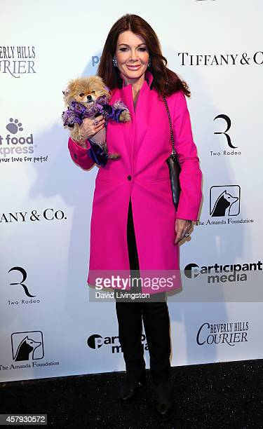 TV personality Lisa Vanderpump attends the Amanda Foundation's 2014 Bow Wow Beverly Hills Halloween Rodeo Drive Night of the Living Dog event at Via...