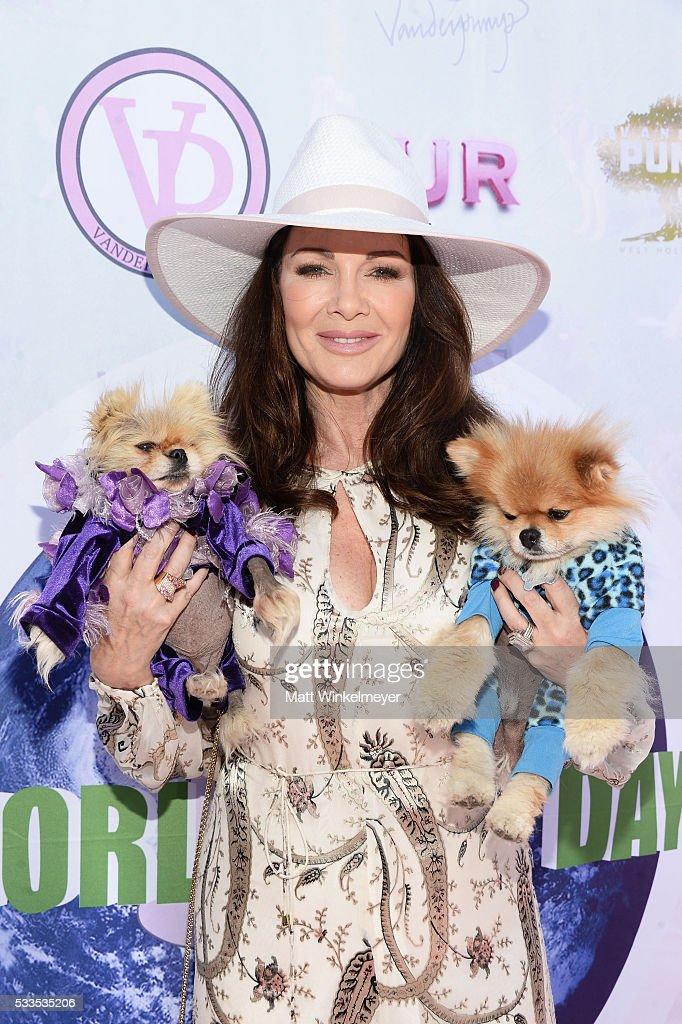 World Dog Day Celebration - Arrivals : News Photo