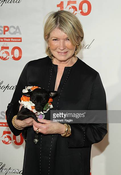 TV personality Martha Stewart attends the 19th Annual ASPCA Bergh Ball at The Plaza Hotel on April 14 2016 in New York City