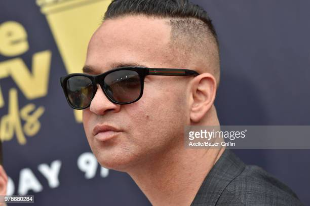 Personality Mike Sorrentino attends the 2018 MTV Movie And TV Awards at Barker Hangar on June 16, 2018 in Santa Monica, California.