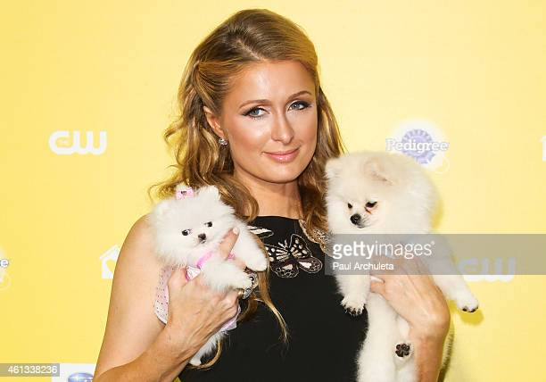 Personality Paris Hilton attends The World Dog Awards at Barker Hangar on January 10 2015 in Santa Monica California