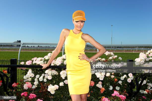 Personality Rachael Finch poses during Melbourne Cup Day at Flemington Racecourse on November 5 2013 in Melbourne Australia