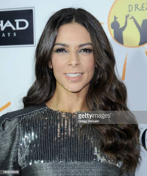 TV personality Terri Seymour arrives at the Dream For Future Africa Foundation Gala at Spago on October 24 2013 in Beverly Hills California
