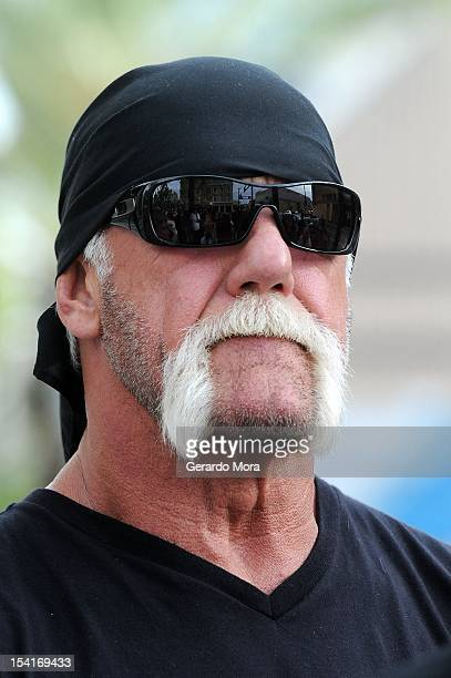 Hulk hogan court stock photos and pictures getty images tv personality terry bollea aka hulk hogan attends a press conference to discuss legal action being pmusecretfo Gallery