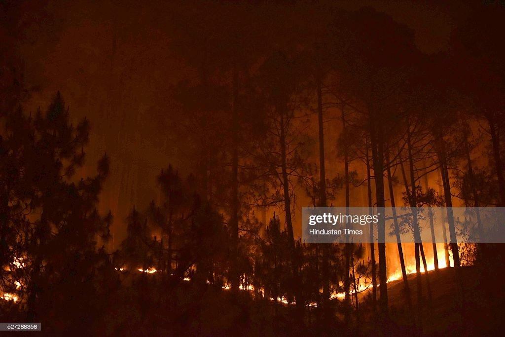 Uttarakhand Forest Fires : News Photo