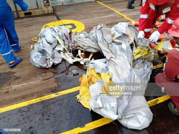 Pertamina Hulu Energi Offshore North West Java team collect debris of Lion Air JT 610 aircraft in Karawang waters West Java Indonesia on October 29...