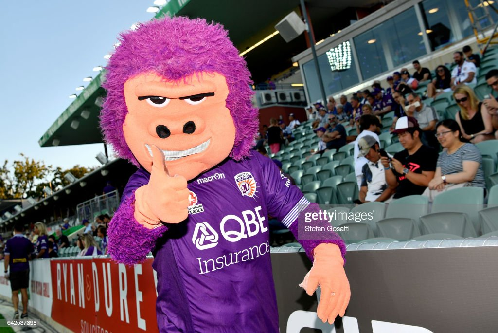 Perth Glory mascot roams the boundry before the round 20 A-League match between Perth Glory and Brisbane Roar at nib Stadium on February 18, 2017 in Perth, Australia.