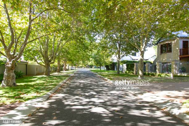 perth suburban street - perth australia stock pictures, royalty-free photos & images