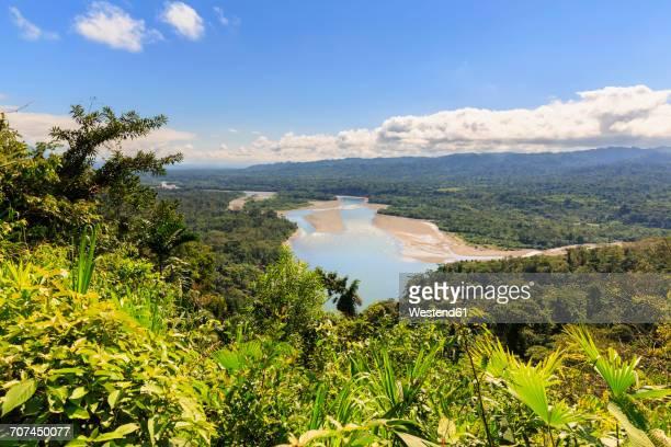 peru, amazon basin, view on rio madre de dios from mirador atalaya - paisajes de peru fotografías e imágenes de stock