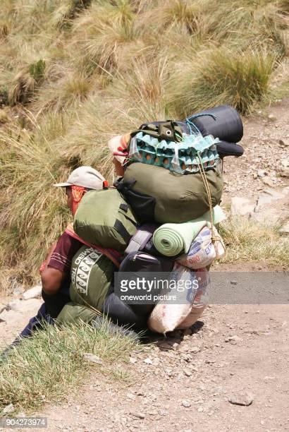 Peru Urubamba Incatrail Porter Dead Womans Pass