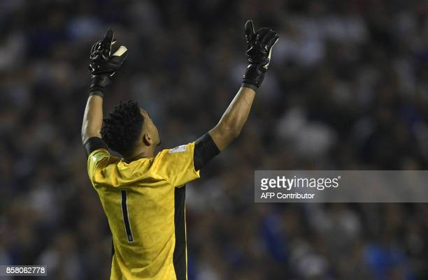 Peru's goalkeeper Pedro Gallese celebrates at the end of their goalless 2018 World Cup qualifier football match against Argentina in Buenos Aires on...