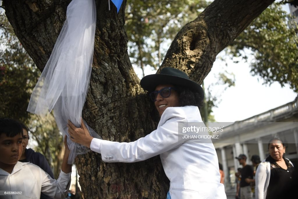 GUATEMALA-ENVIRONMENT-TREE-MARRIAGE-TORRES : News Photo