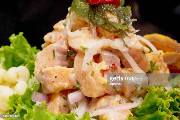 peruvian ceviche dish - ceviche fotografías e imágenes de stock