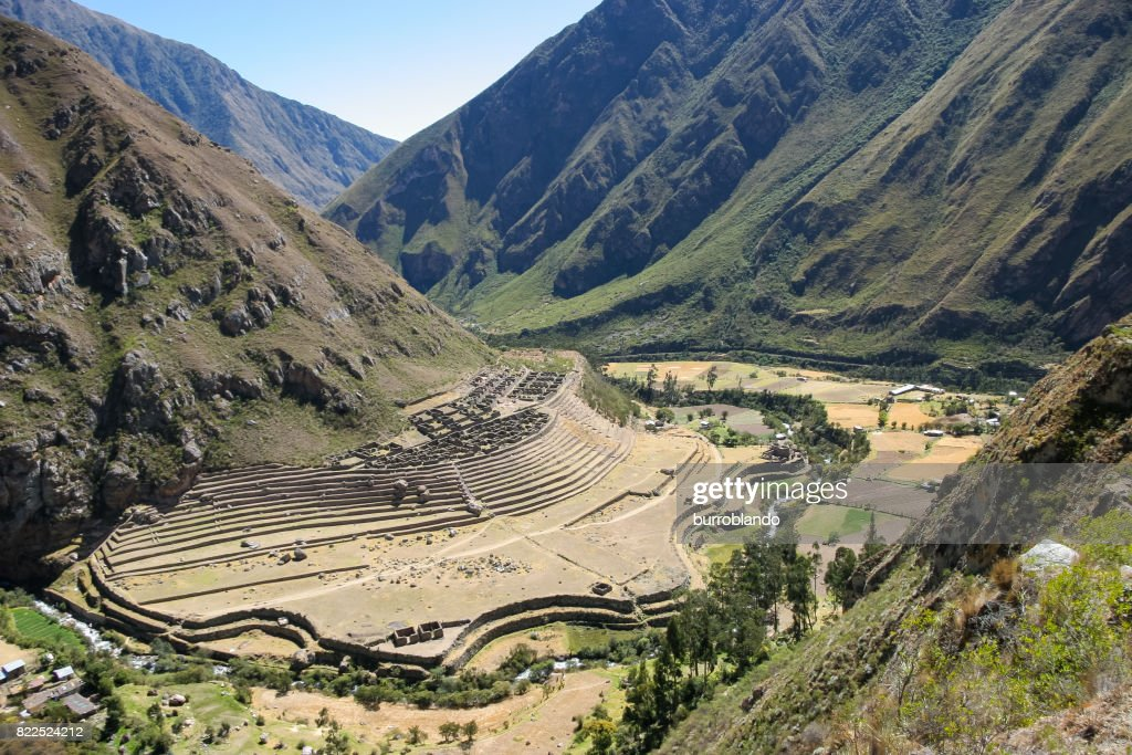 Peruvian farming terrace built into the side of a hill : Stock Photo