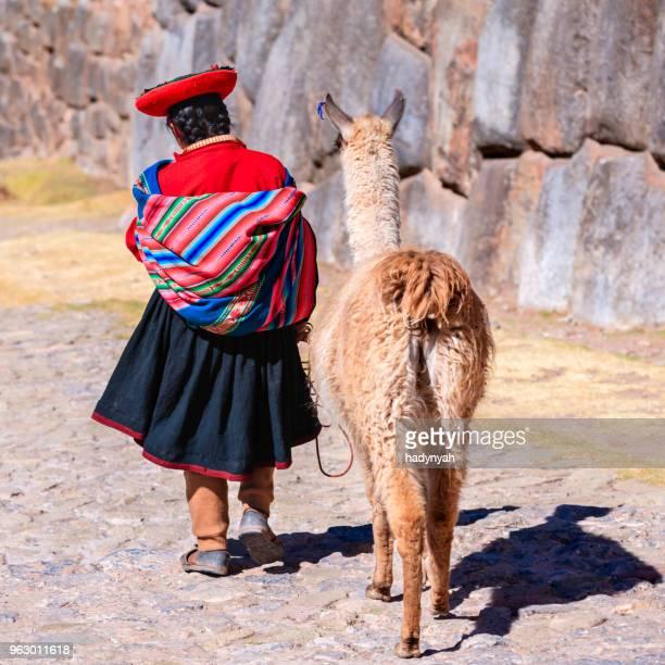 peruanische mädchen trägt-kleidung zu fuß mit lama in der nähe liegende cuzco - bezirk cuzco stock-fotos und bilder