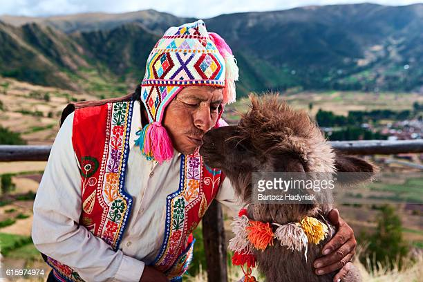 peruvian man kissing llama near pisac, sacred valley, peru - südamerika stock-fotos und bilder