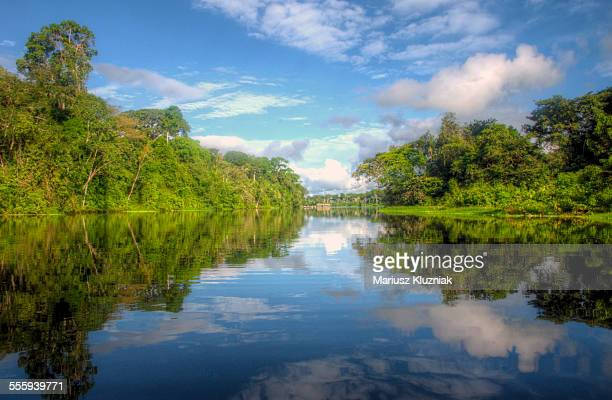 Peruvian rain forest and Amazon river reflections