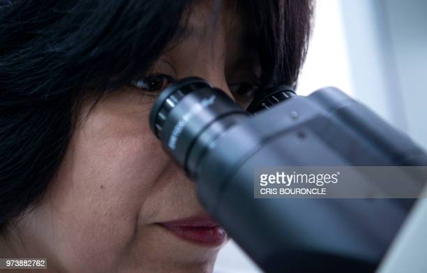 Peruvian scientist Martha Valdivia a biology professor at the University of San Marcos works at her lab on the main campus in Lima on June 4 2018 In...