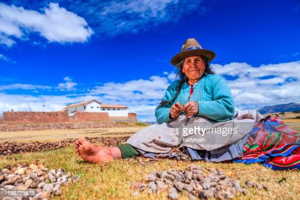 peruvian woman preparing chuno - frozen potato, near cuzco,peru - altiplano stock pictures, royalty-free photos & images