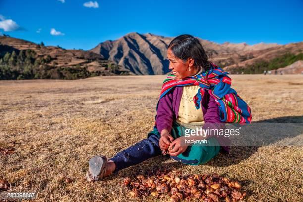 peruvian woman preparing chuno - frozen potato, near cuzco,peru - quechua people stock pictures, royalty-free photos & images