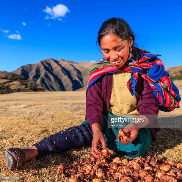 peruano mujer preparar chuno-congelado papas, cerca de cuzco, perú - cultura peruana fotografías e imágenes de stock