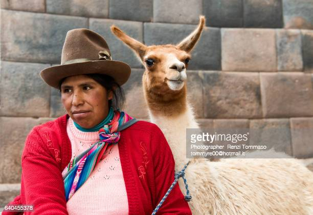 peruvian woman with lama in cuzco - utc−10:00 stock pictures, royalty-free photos & images
