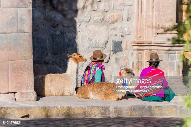 peruvians women with lama in cuzco - utc−10:00 stock pictures, royalty-free photos & images