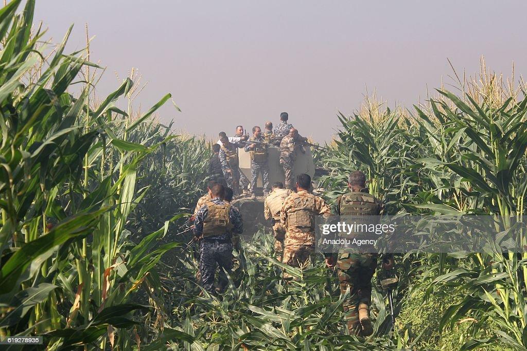 Operation against Daesh in Kirkuk : News Photo