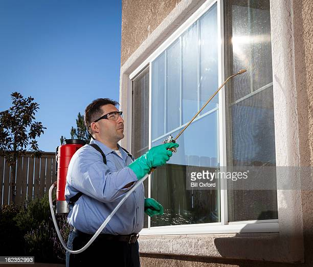 pest control - pest stock photos and pictures