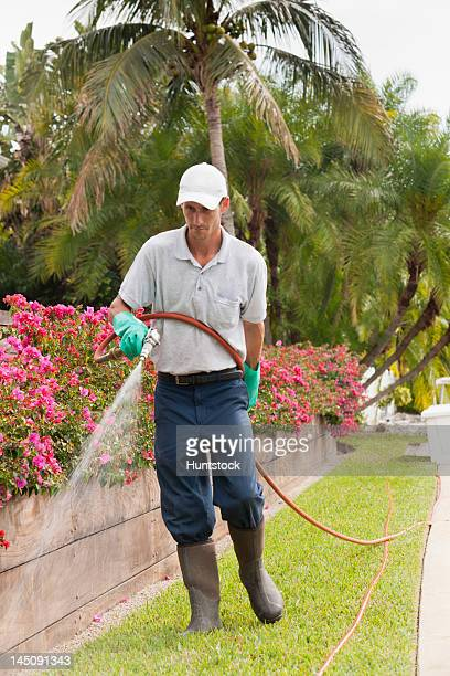 Pest control technician using high pressure spray gun and hose on flowers and lawns