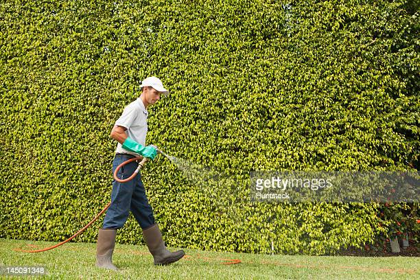 Pest control technician using high pressure spray gun and hose on  lawns