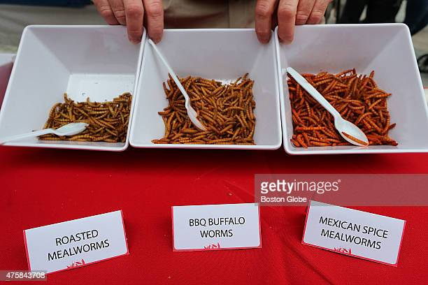 A 'Pestaurant' or temporary bug restaurant was set up in from of Faneuil Hall where people could chow down on food made with bugs The pest control...