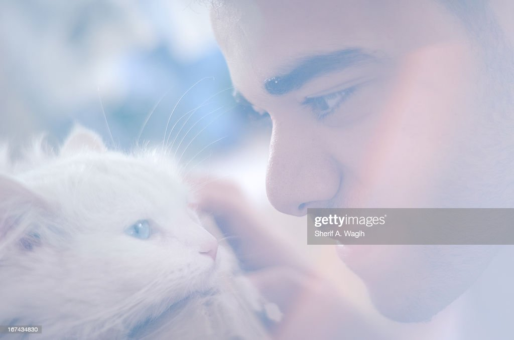 Pet affection : Stock Photo