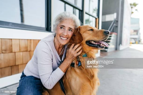 huisdier en mij-gezondheid gewoonten - golden retriever stockfoto's en -beelden
