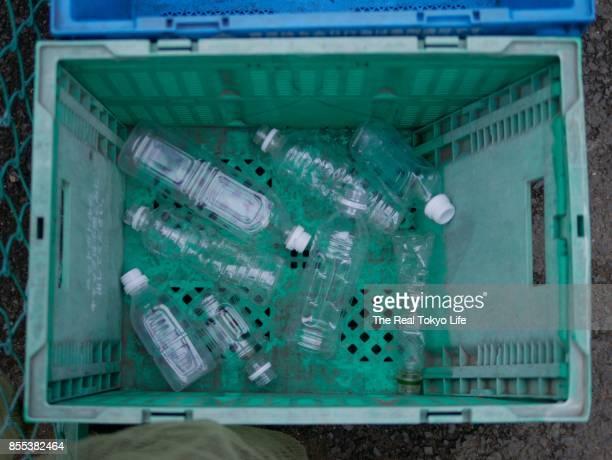 pet bottle in recycle box