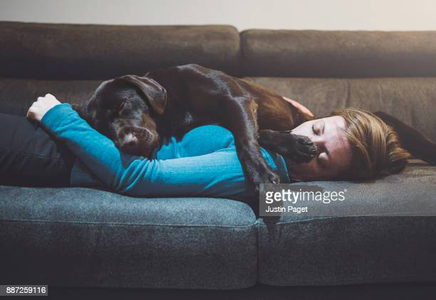 pet dog asleep on woman - embracing stock pictures, royalty-free photos & images